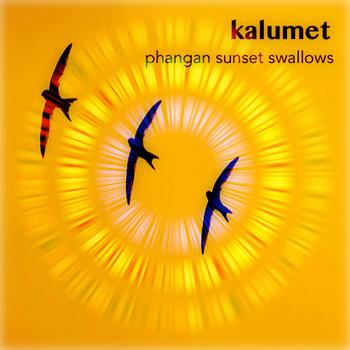 phangan_sunset_swallows_280714