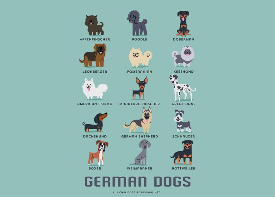 dogs-of-the-world-posters_24094_14