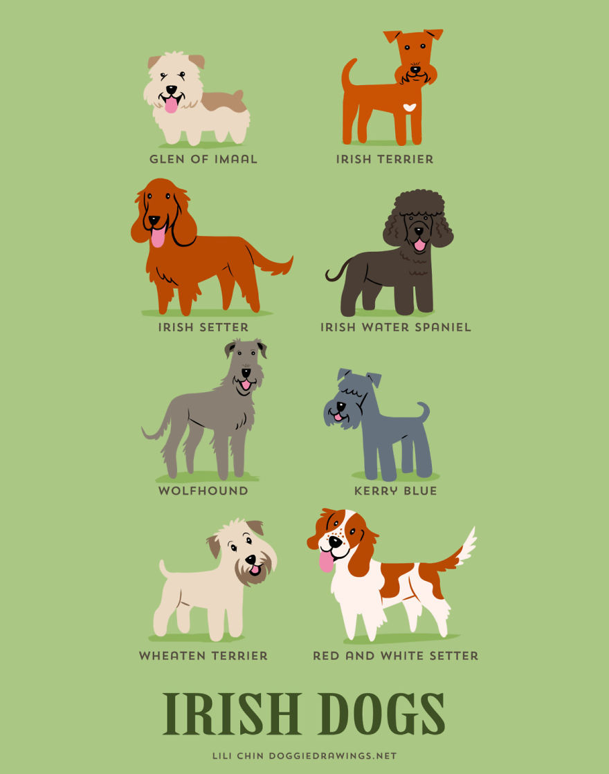 dogs-of-the-world-posters_24094_18