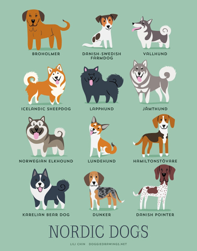 dogs-of-the-world-posters_24094_8