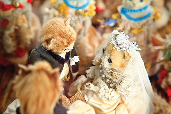 The Kittens' Wedding; circa 1890
