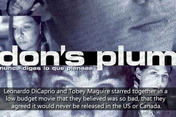 dons_plum