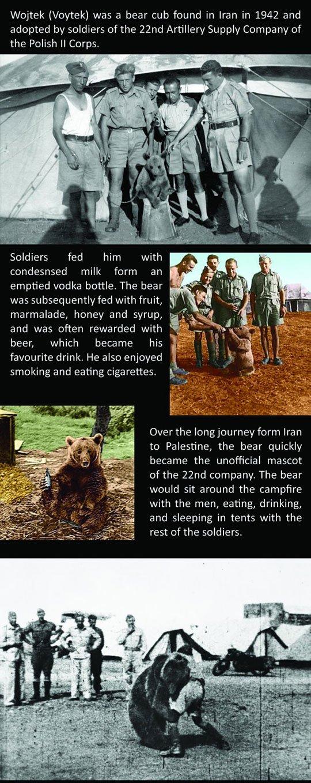 woytek_the_soldier_bear_1
