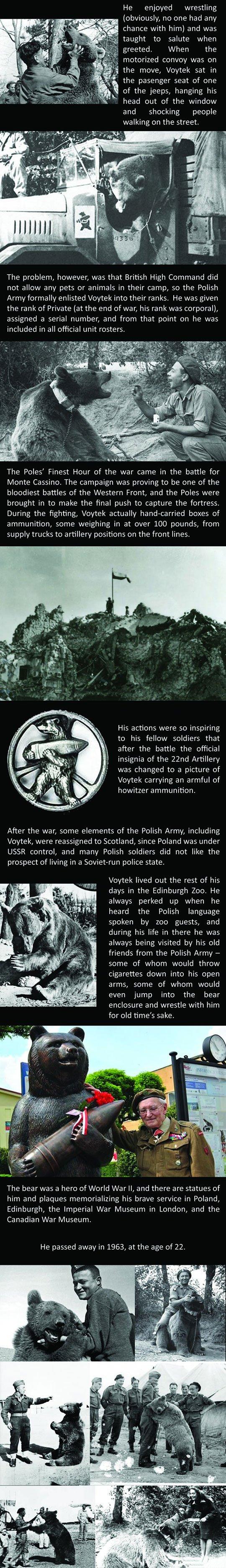 woytek_the_soldier_bear_2
