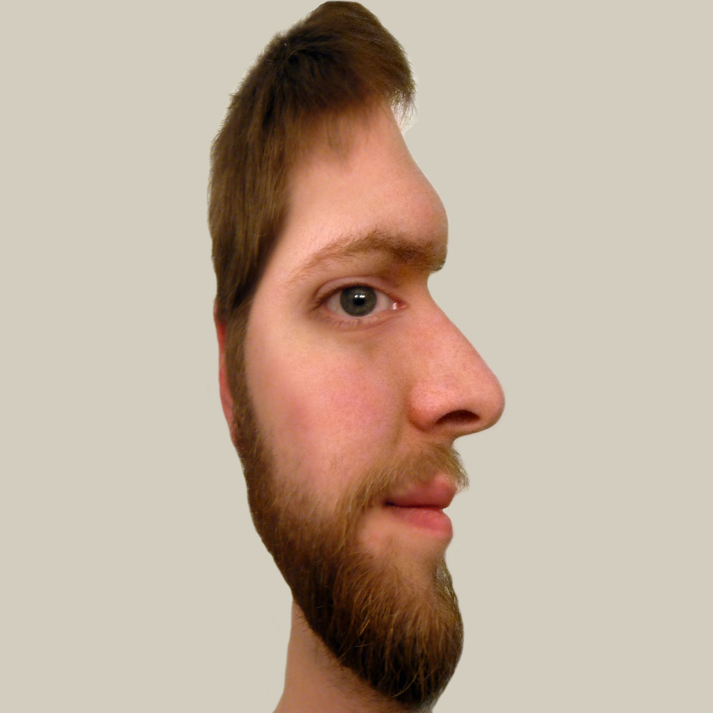 face profile illusion earthly mission