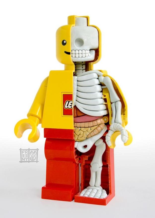 toys-anatomy-1a