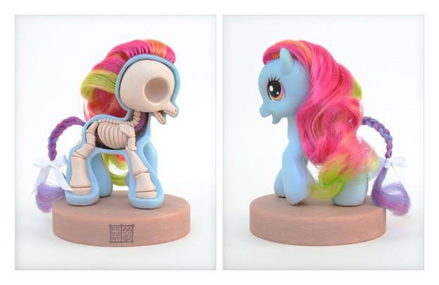 toys-anatomy-1d