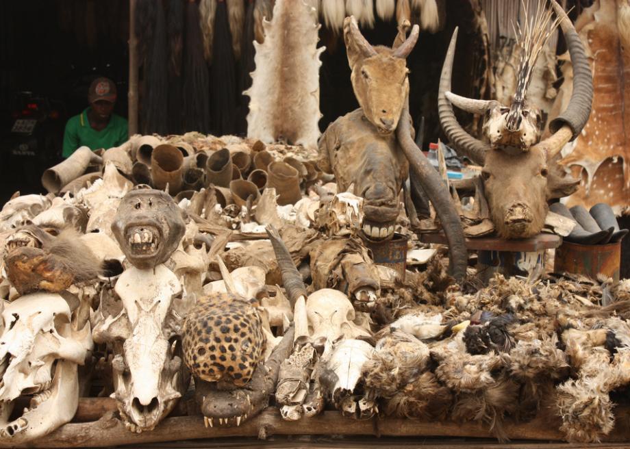 akodessewa-voodoo-fetish-market-togo-5