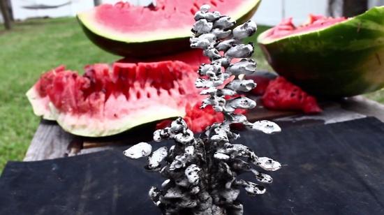 melon_aluminium_art_1