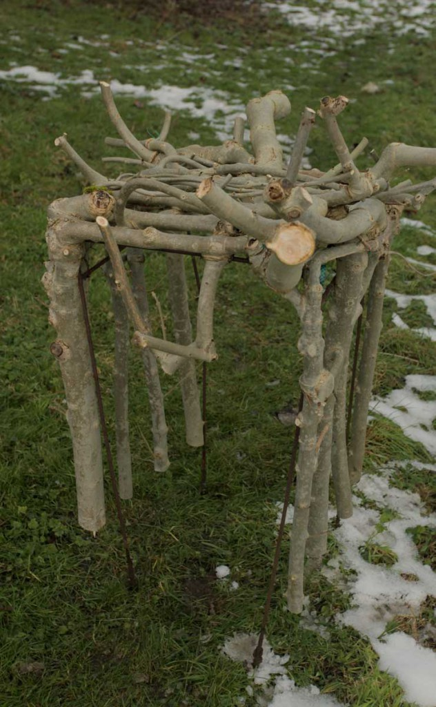designer-grows-trees-into-chairs-6