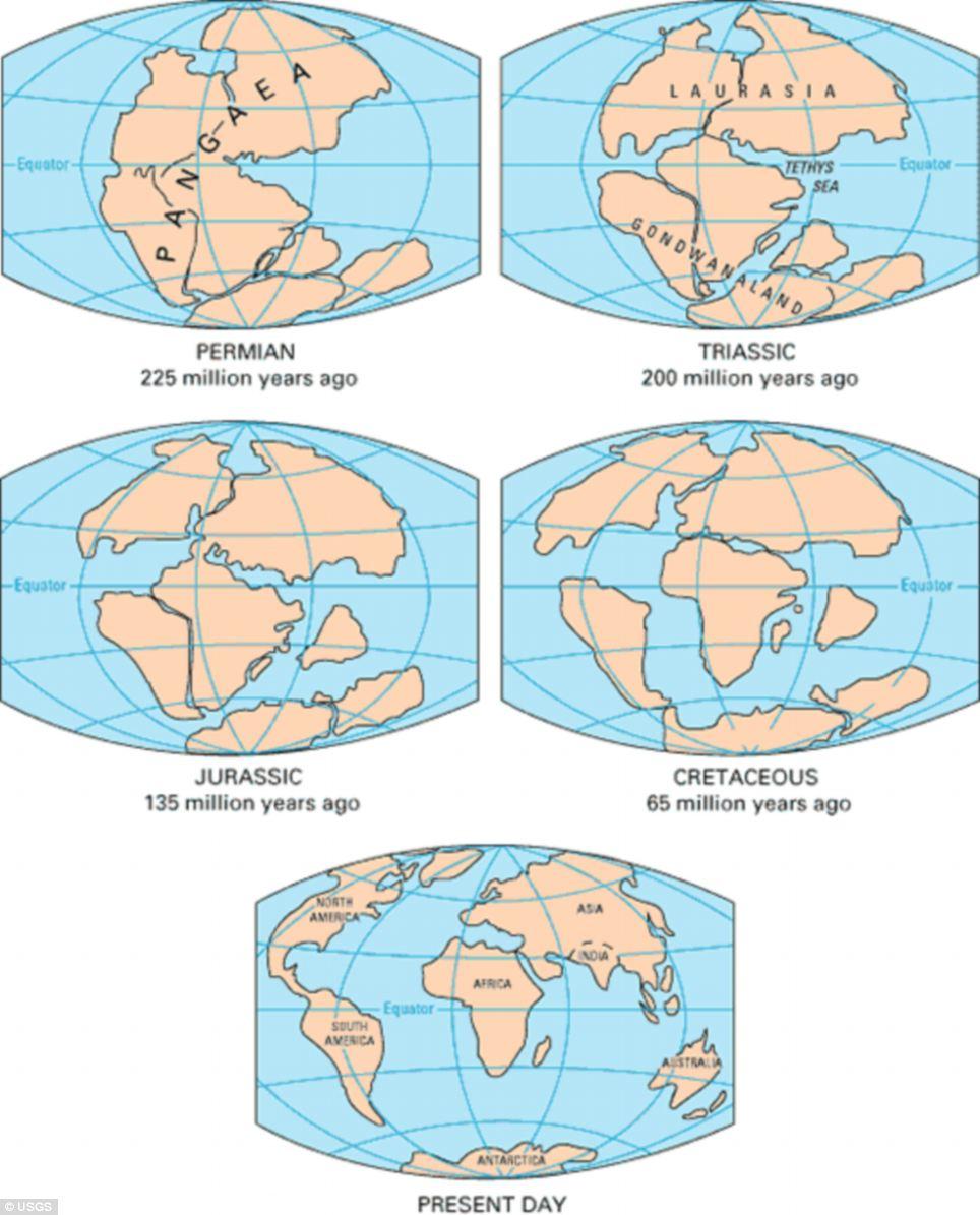 pangea-infographic