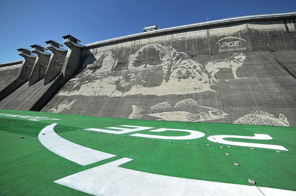 worlds-larges-eco-graffiti-poland-2