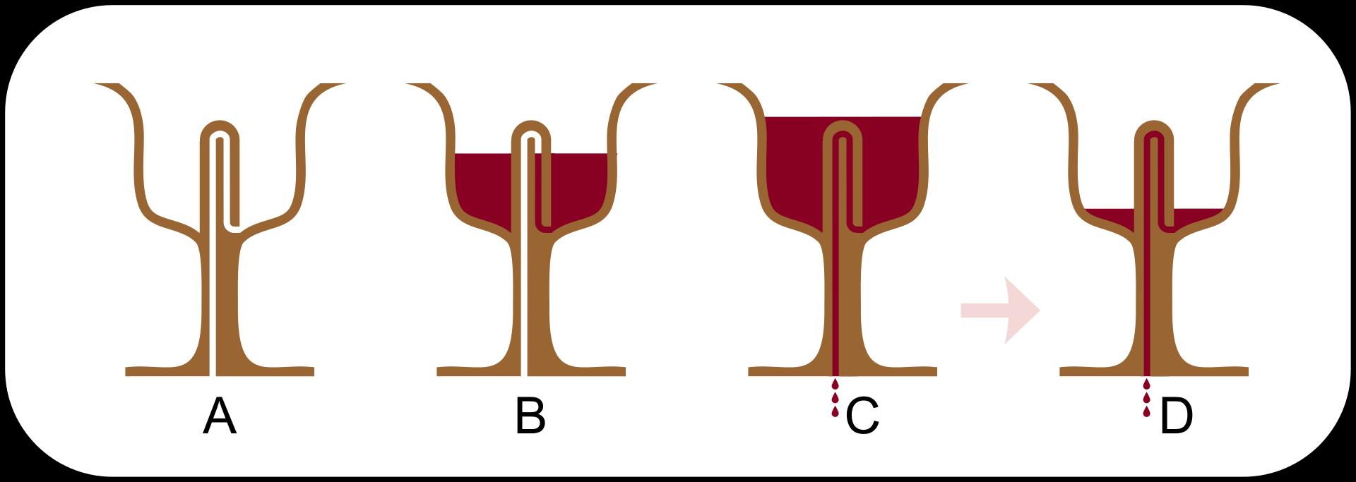 Pythagoras_Greedy_Tantalus_cup_1