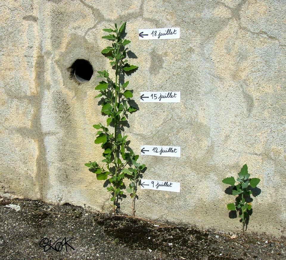 cool-street-art-from-paris-oak-oak-part2-7