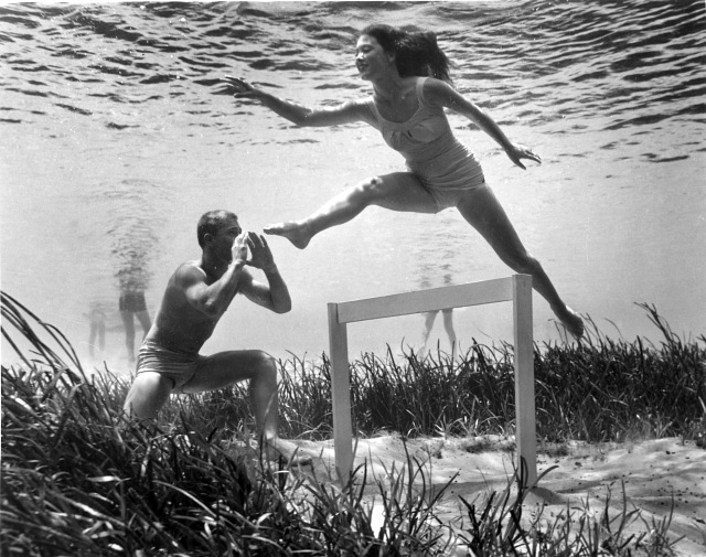 underwater-life-mozert-photography-6