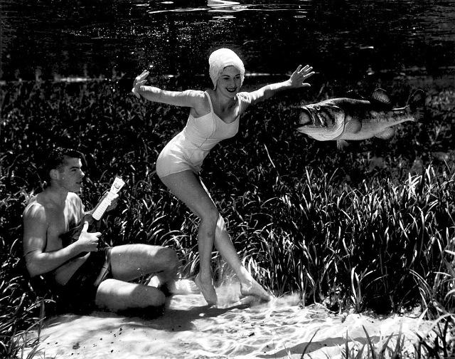 underwater-life-mozert-photography-9