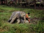 Breathtaking Photos of Faraway Places by Steve McCurry