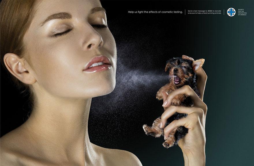 animal-abuse-10