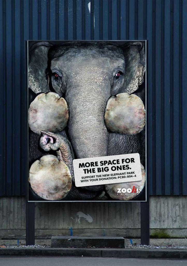 Heartbreaking Public Ads On Animal Cruelty