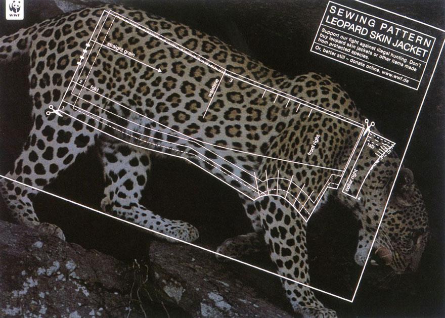 animal-abuse-24