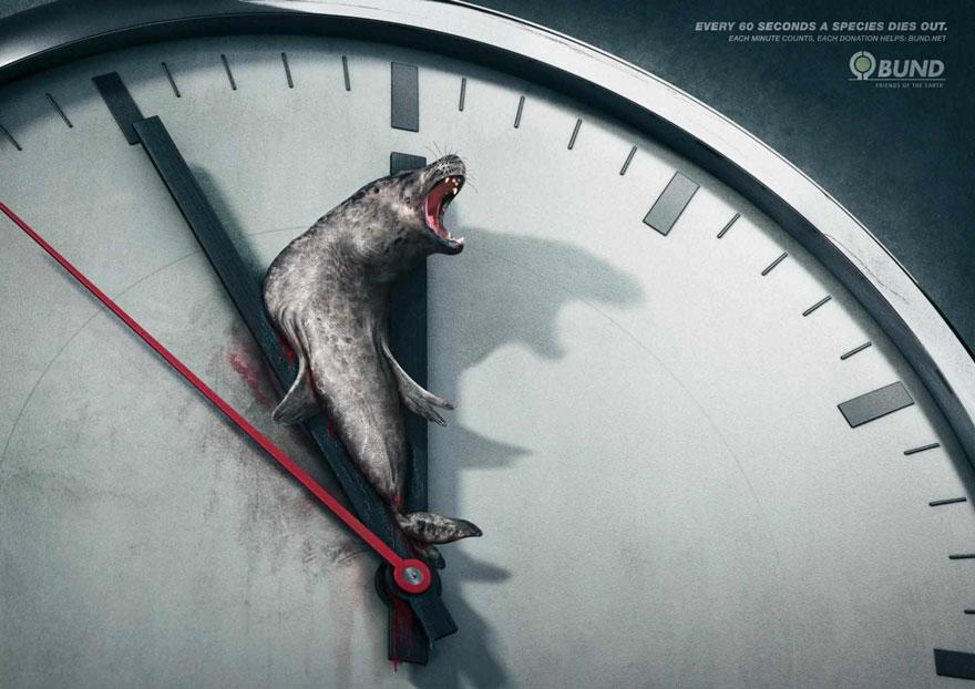 animal-abuse-3