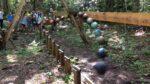 Giant Pendulum Wave Demonstration