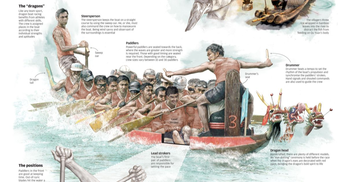 dragon-boat-rhythm-infographic