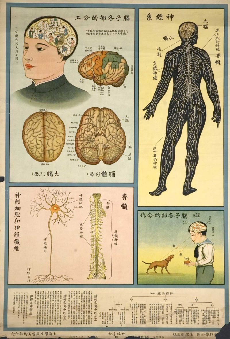 human-body-as- industrial-factory-on-1933-chinese- health-education-posters_8