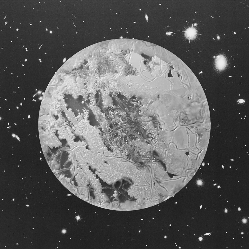 amazing-planets-that-are-actually-bacteria-Cat
