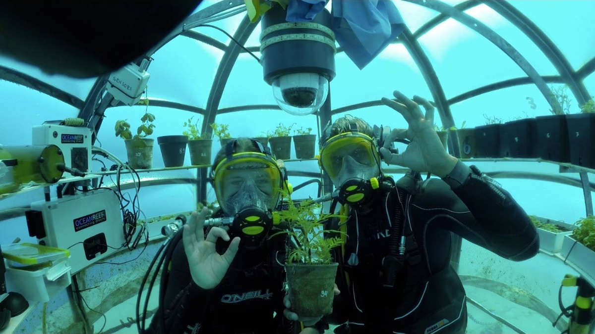 nemo-garden-underwater-biosphere-1