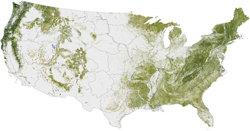 usa_tree_map-fb