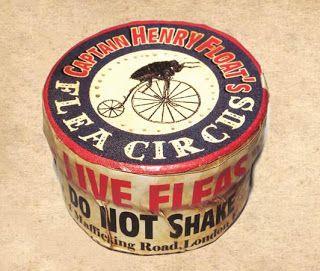 flea-circus-poster-8