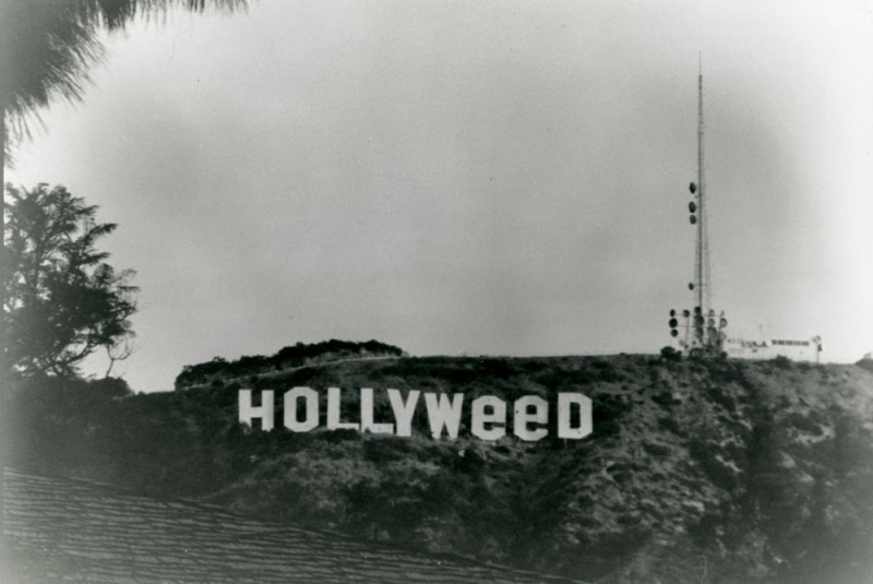hollyweed-sign-2