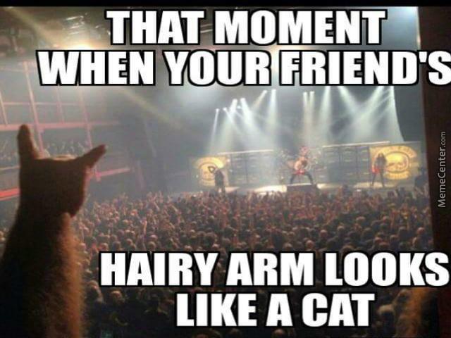 10-best-heavy-metal-memes-9.jpg