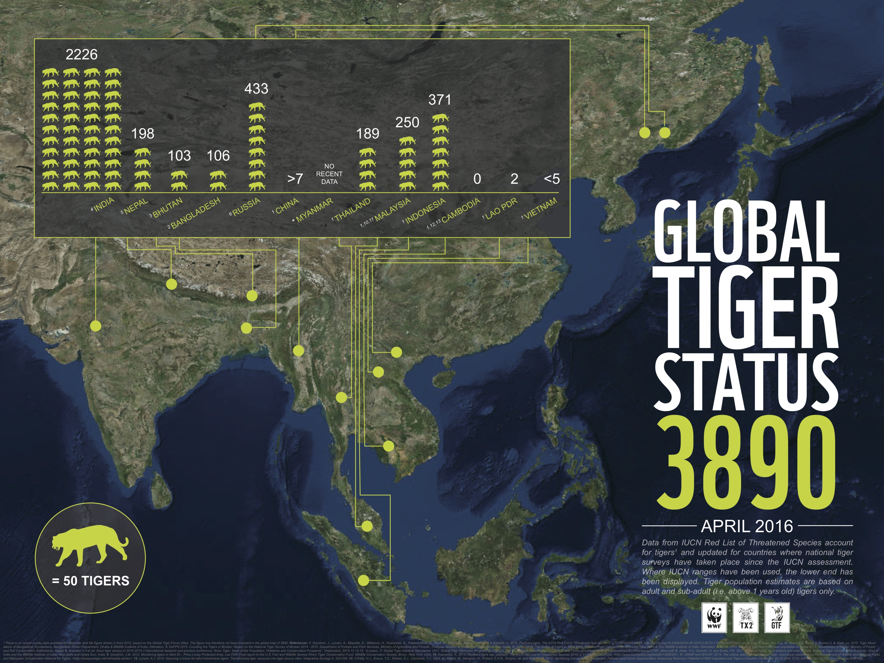 tiger numbers infographic earth