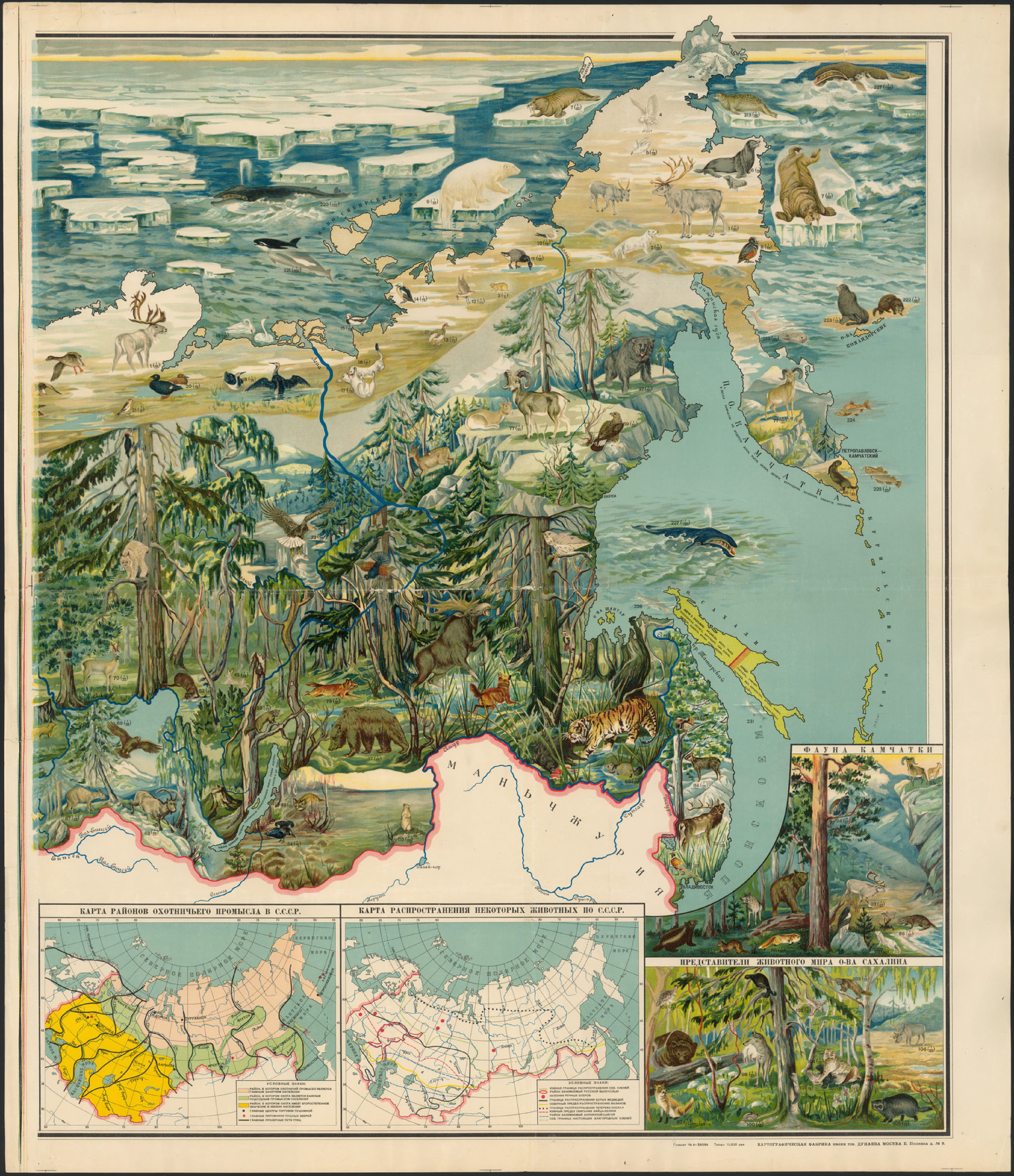 Zoogeographical Educational Map of the USSR