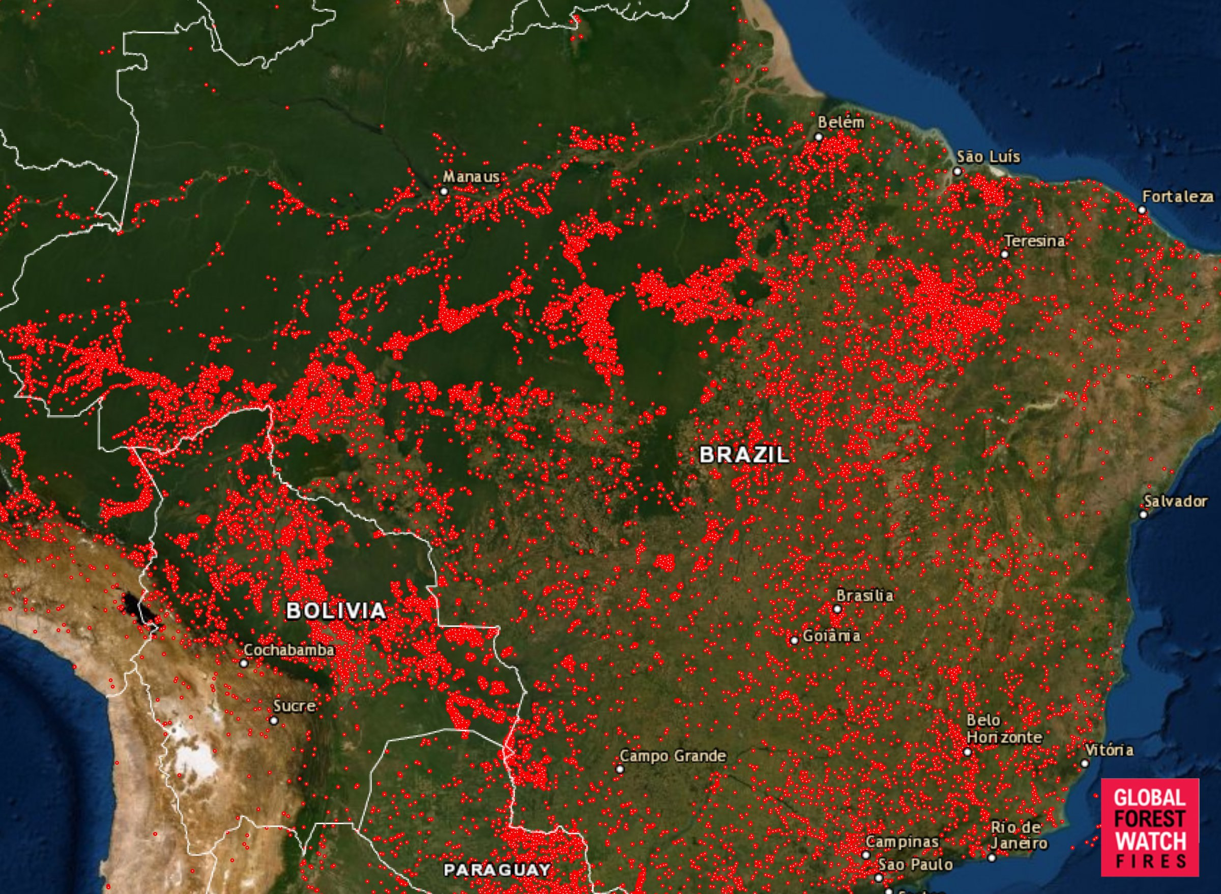 The Amazon Fires Are So Big They Can Be Seen from Space