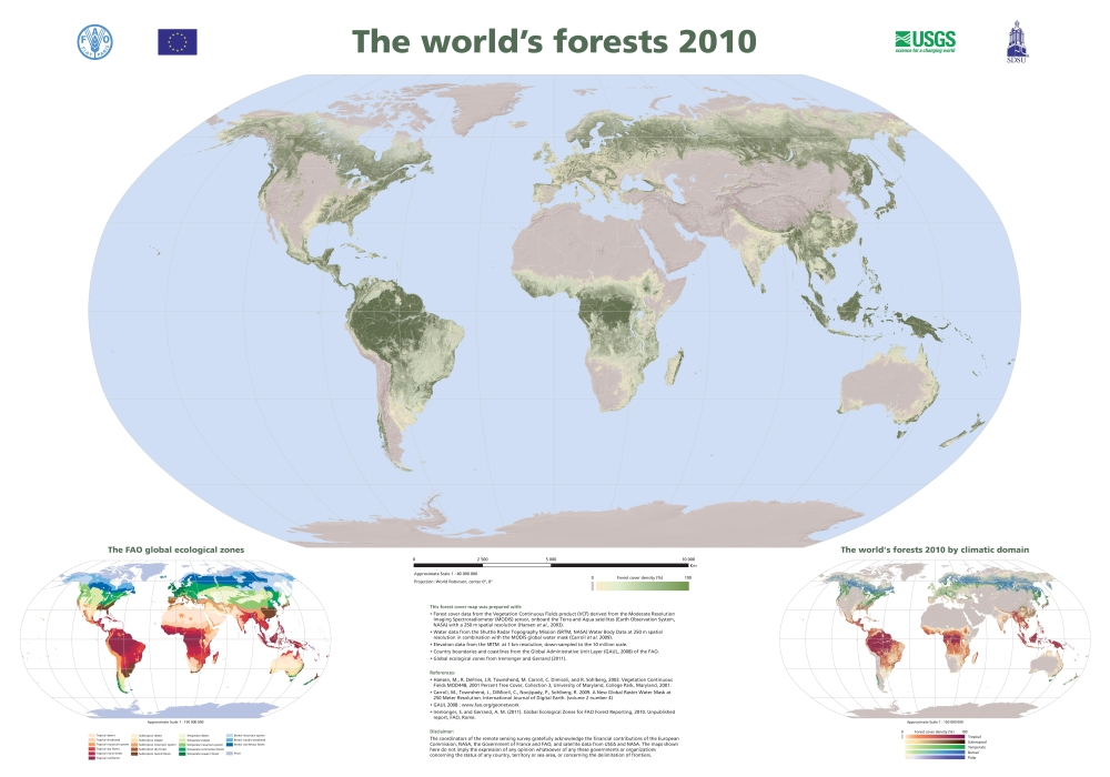 Tree Cover Density Around the World