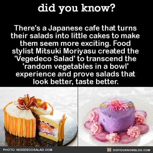 japanese salad cakes
