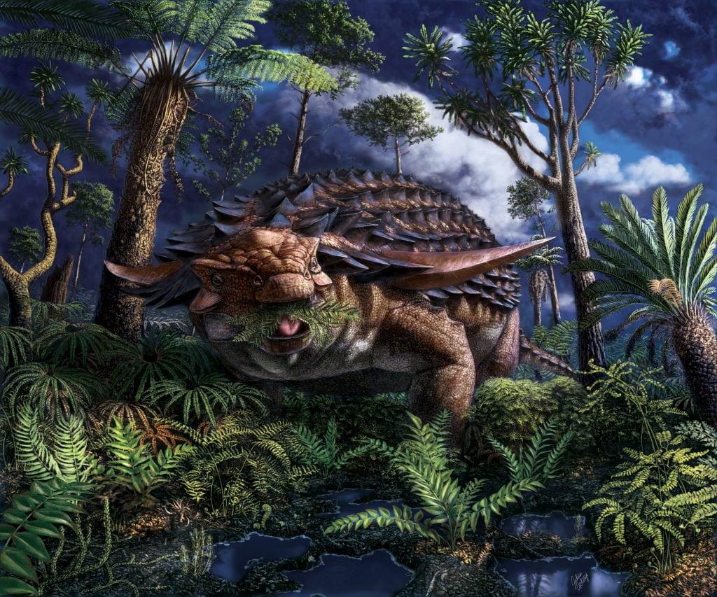 An illustration of an nodosaur by artist Julius Csotonyi. Brandon University/Royal Tyrrell Museum